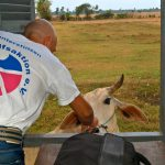 Kambodscha ist halt ein Agrarstaat :)